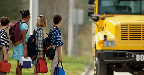 Photo of school buses