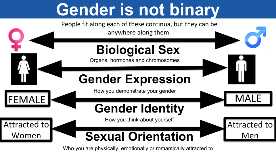 Gender is not binary. People fit along each of the following continua, but they can be anywhere along them. Biological Sex: Organs, hormones and chromosomes. Gender Expression: How you demonstrate your gender. Gender Identity: How you think about yourself. Sexual Orientation: Who you are physically, emotionally or romantically attracted to.
