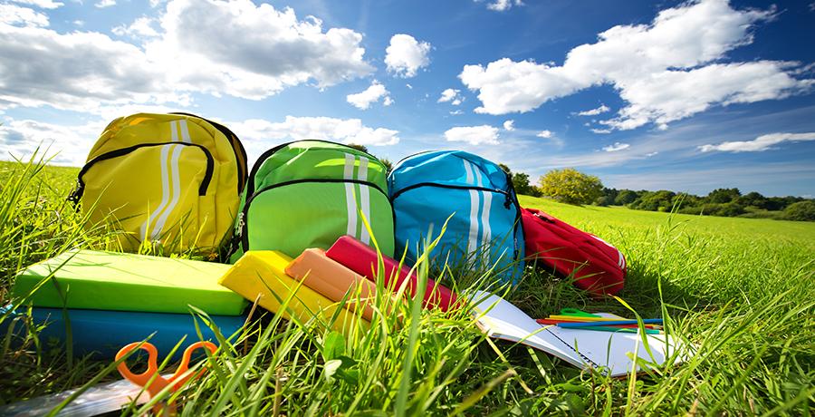 school supplies in a summer field